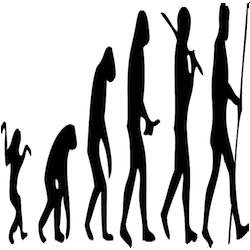 Disegno_dell'evoluzione_umana