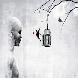 colibrì-fuori-dalla-gabbia-con-cuore-che-pende-dal-becco-e1473587230719