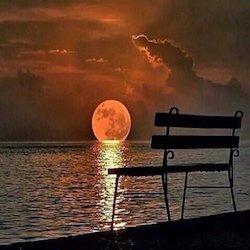 amore solitudine solo sole panchina mare poesia malinconia