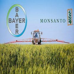 Sì di Bruxelles al matrimonio Bayer – Monsanto, ma a certe condizioni.