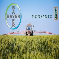 Bayer_Monsanto-1