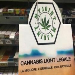 Le nuove marijuane legali in tabaccheria.