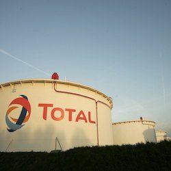 La Francia dà il via libera all'utilizzo di olio di palma nel carburante.