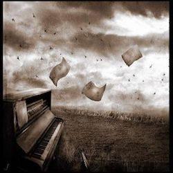 Poésie au vent