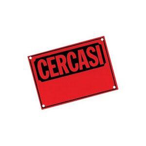 A A A Cercasi (Testo comparso presso  CGIL, sede centrale Roma il 9 Ottobre 2021)